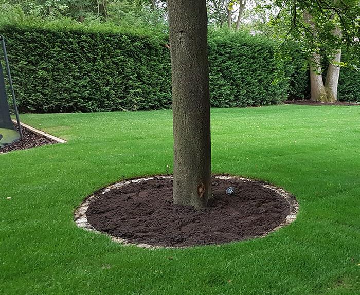Tree Area Complete